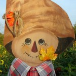 Scarecrow at The Peach Tree Farm near Columbia Missouri