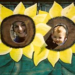 Sunflower Photo Stand at The Peach Tree Farm near Columbia MO