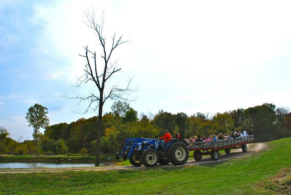 Tractor and Wagon Hay Rides at The Peach Tree Farm in Boonville Missouri